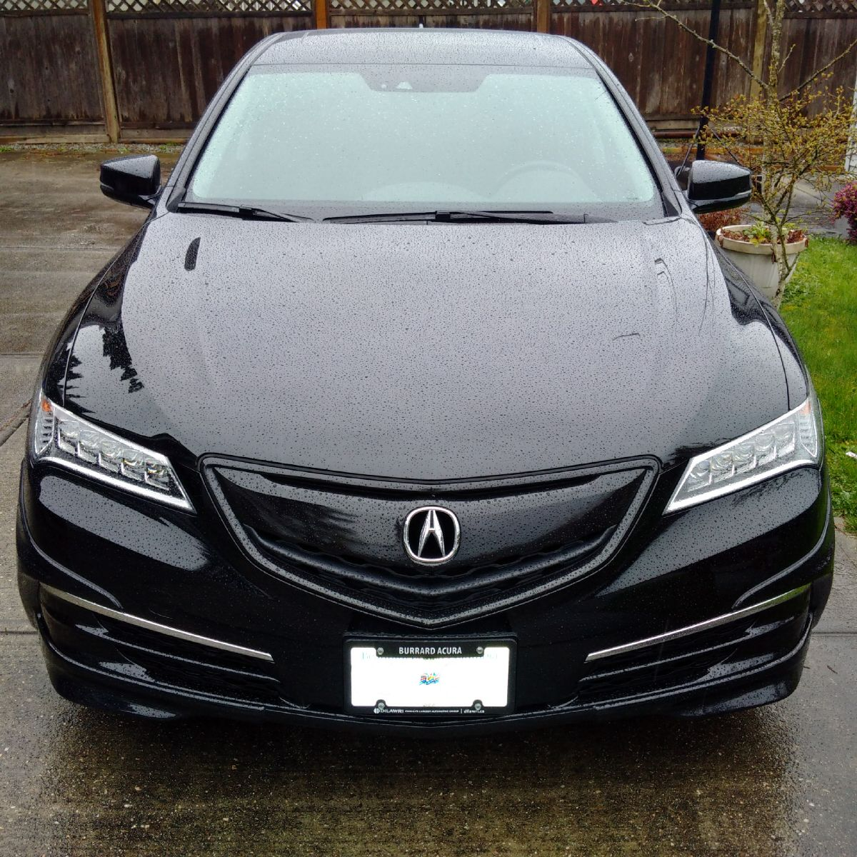 Random Pictures Of Your Acura TLX Go Here!