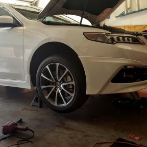 tlx project